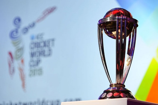 The World Cup is just one of the things cricket fans have to look forward to as 2014 progresses