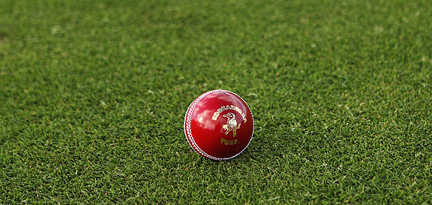 Kookaburra balls are widely used in international cricket